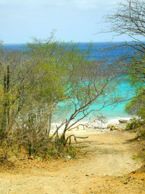 Ein Strand, nicht angelegt, wie er ursprünglicher nicht sein könnte